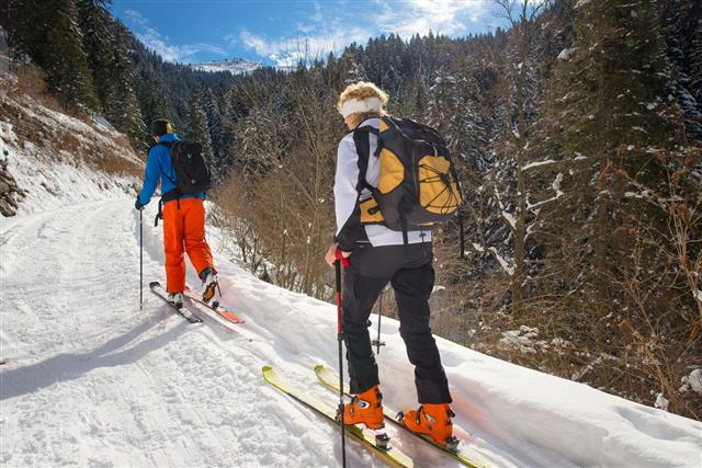 Alpine Skiing With Alpine Guide Instructor