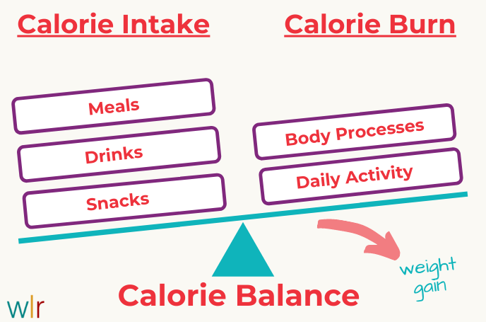 Calorie Balance - Weight Gain