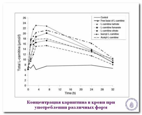 турбослим l карнитин липоевая кислота цена схема